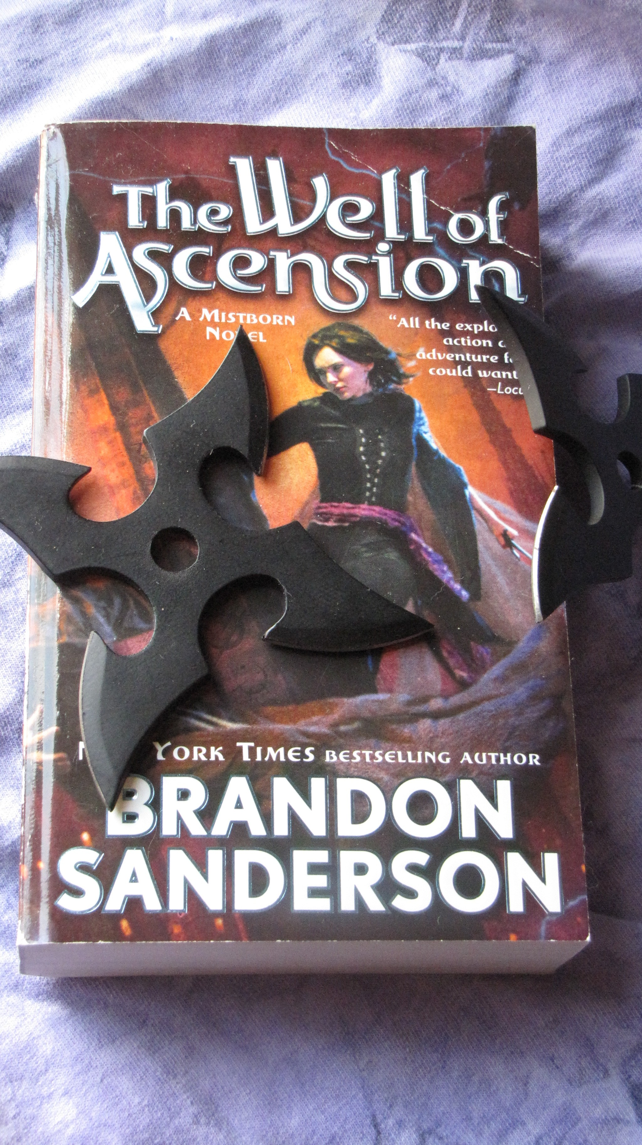 the well of ascension s anderson br andon