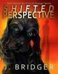 BridgerShiftedPerspective