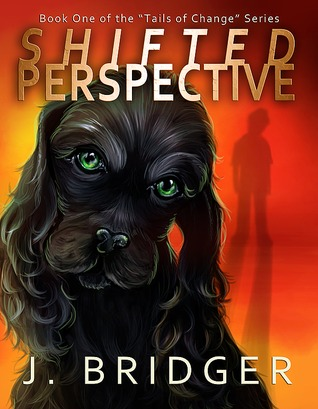 BridgerShiftedPerspective