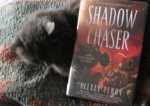 Smudge Cat as a book stand!