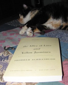 Uncorrected proof for giveaway. Cat not included.