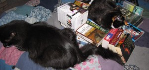 Of course I stacked these books just so, just so for the cats.