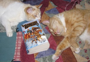 The Wheel of Time, bringing angry cats together again and again.