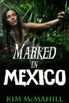 McMahillMarkedInMexico