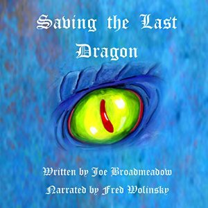 BroadmeadowSavingTheLastDragon